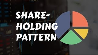 How to find the Shareholding Pattern of a Company?