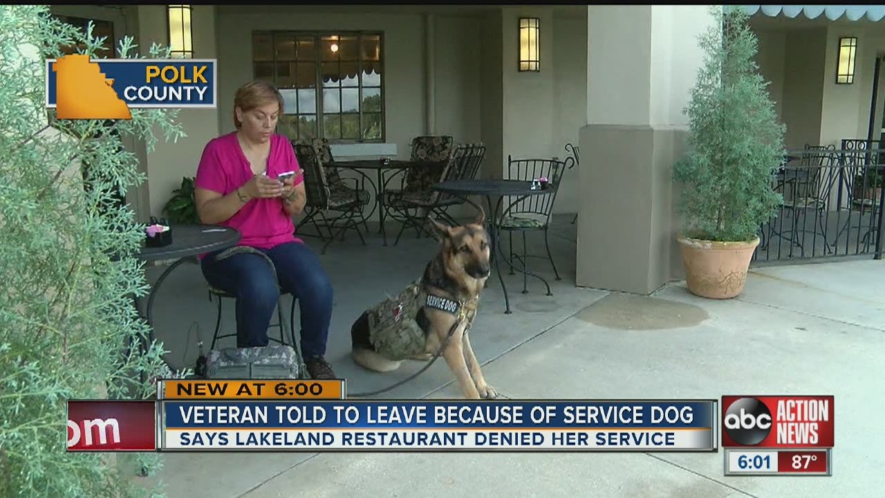 Lakeland Army vet with service dog says restaurant asked her to leave