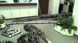 Playing with Junk 8 - Disk Domino 2011 (1800 HD's)