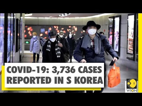 Coronavirus Outbreak: South Korea Cases Pass 3700 | WION Exclusive Report | World News