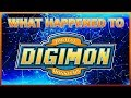 What Happened to Digimon (feat. Billiam)