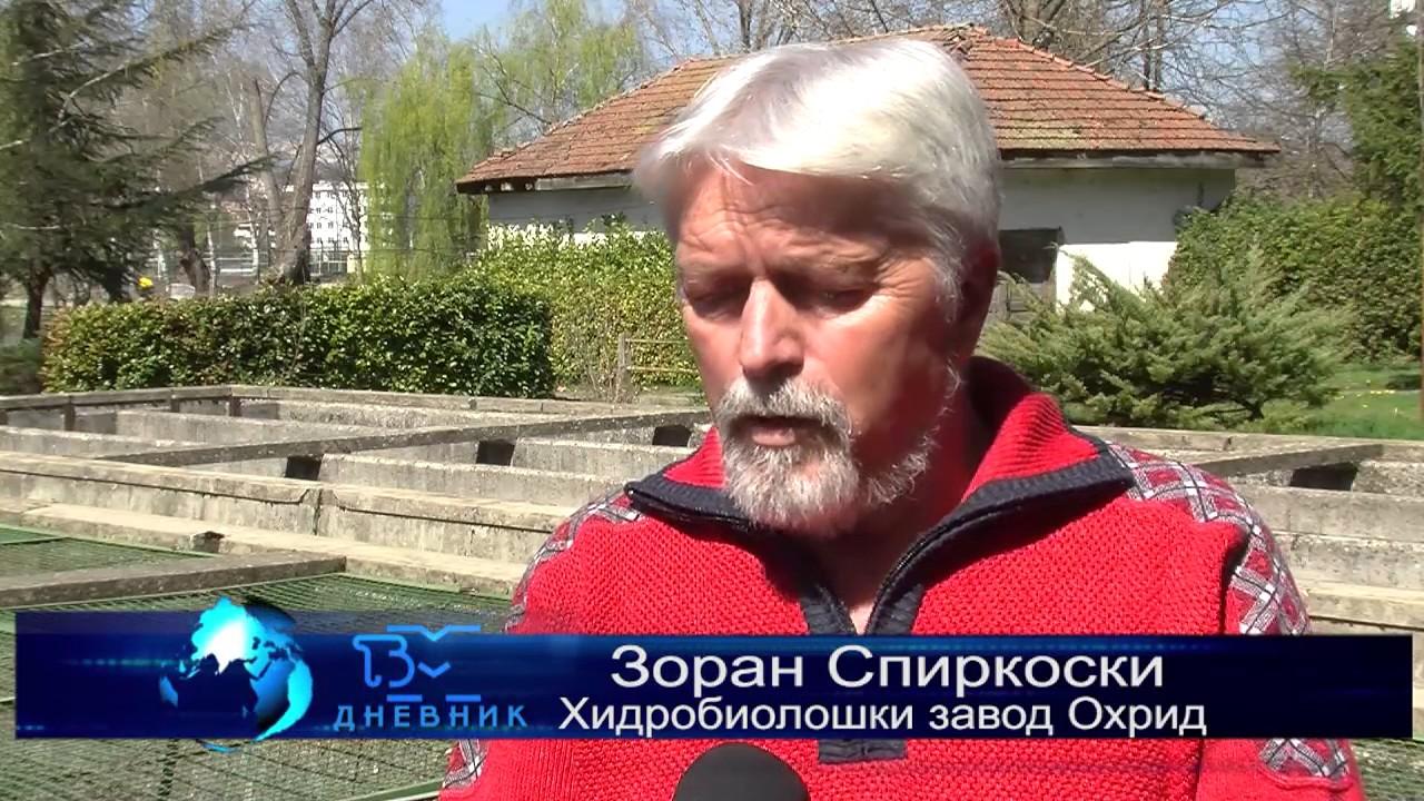 ТВМ Дневник 28.03.2017