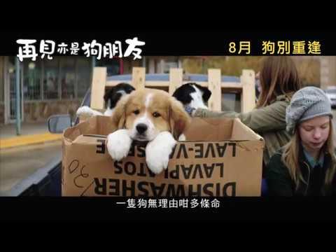 再見亦是狗朋友 (A Dog's Purpose)電影預告