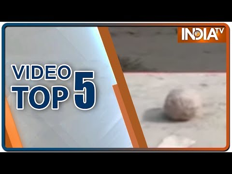 Video Top 5