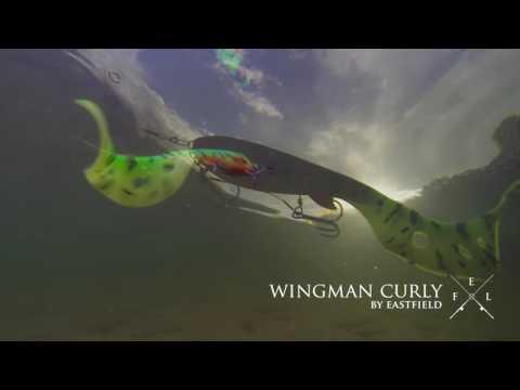 Eastfield Wingman Curly 22cm Gummifische zum Hecht und Wallerangeln