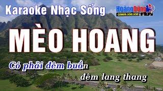Mèo Hoang - Karaoke Nhạc Sống - Beat chất lượng cao