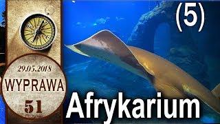 Wrocław - Afrykarium - Wyprawa 51 cz 5