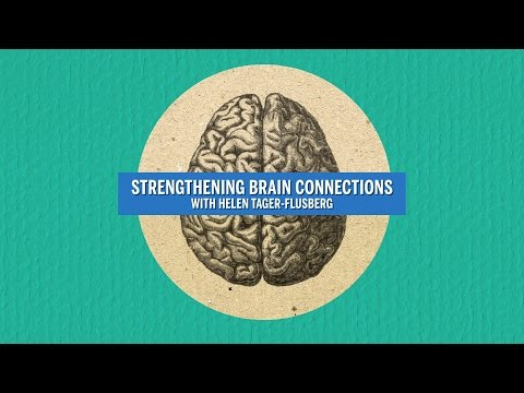 Strengthening Brain Connections