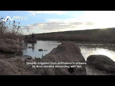 Khabur River feeds dozens of Syrian families  الخابور مصدر رزق لعشرات العائلات السورية