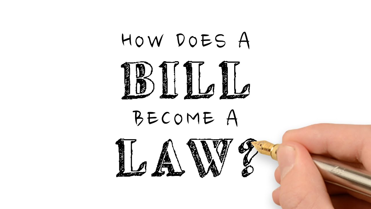how does a bill become a If a proposed bill does not survive the screening process to become a committee bill,  there are many other resources available for information about bills, the.