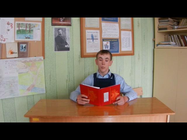 Изображение предпросмотра прочтения – ВадимВоронков читает произведение «Чёткие линии гор…» В.Я.Брюсова