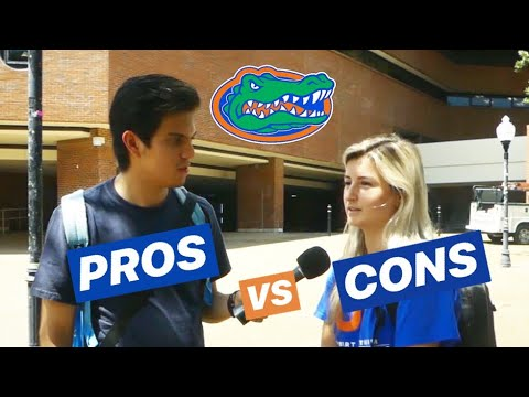 THE GOOD & THE BAD AT THE UNIVERSITY OF FLORIDA