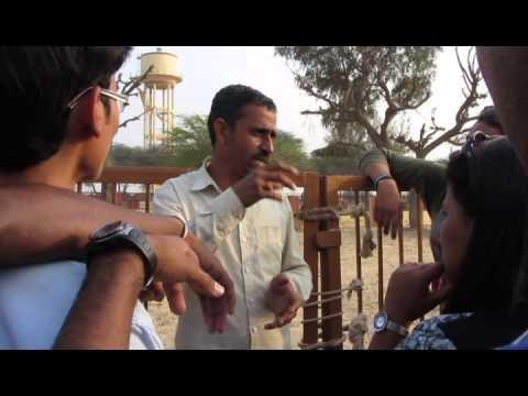 Industrial visit to Rajastan...bikaner,jodhpur,jaisalmer.