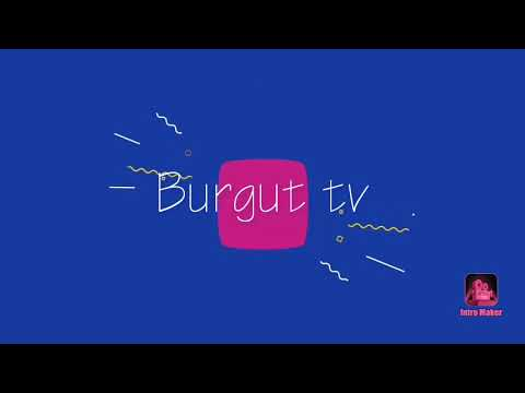 Burgut Tv