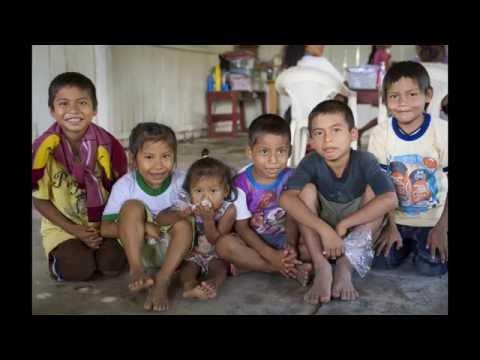Selva in Action   Peruvian American Medical Society (PAMS)