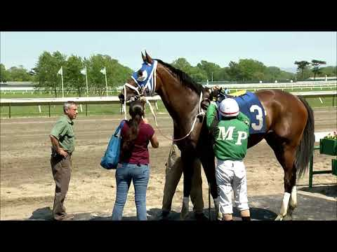 video thumbnail for MONMOUTH PARK 5-19-19 RACE 5