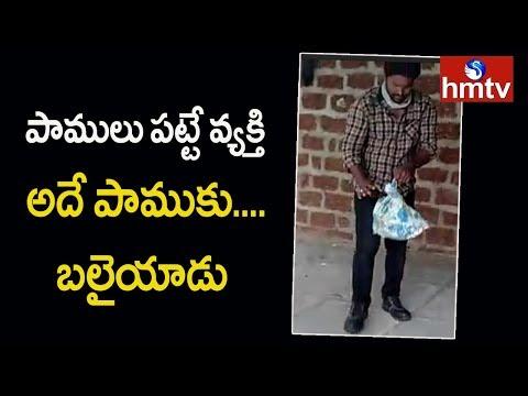 పాములు పట్టే వ్యక్తి.. అదే పాముకు బలైయాడు | Telugu News | hmtv