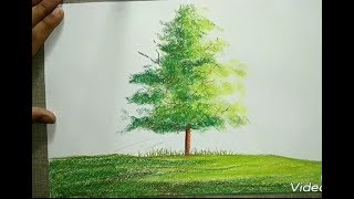 How to draw a soft pastel tree (by parul Aggarwal)