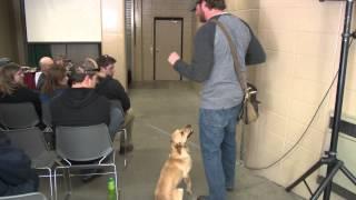 Dog Bone Shed Antler Dog Training Seminar- By Jeremy Moore (everythingsheddog.com)