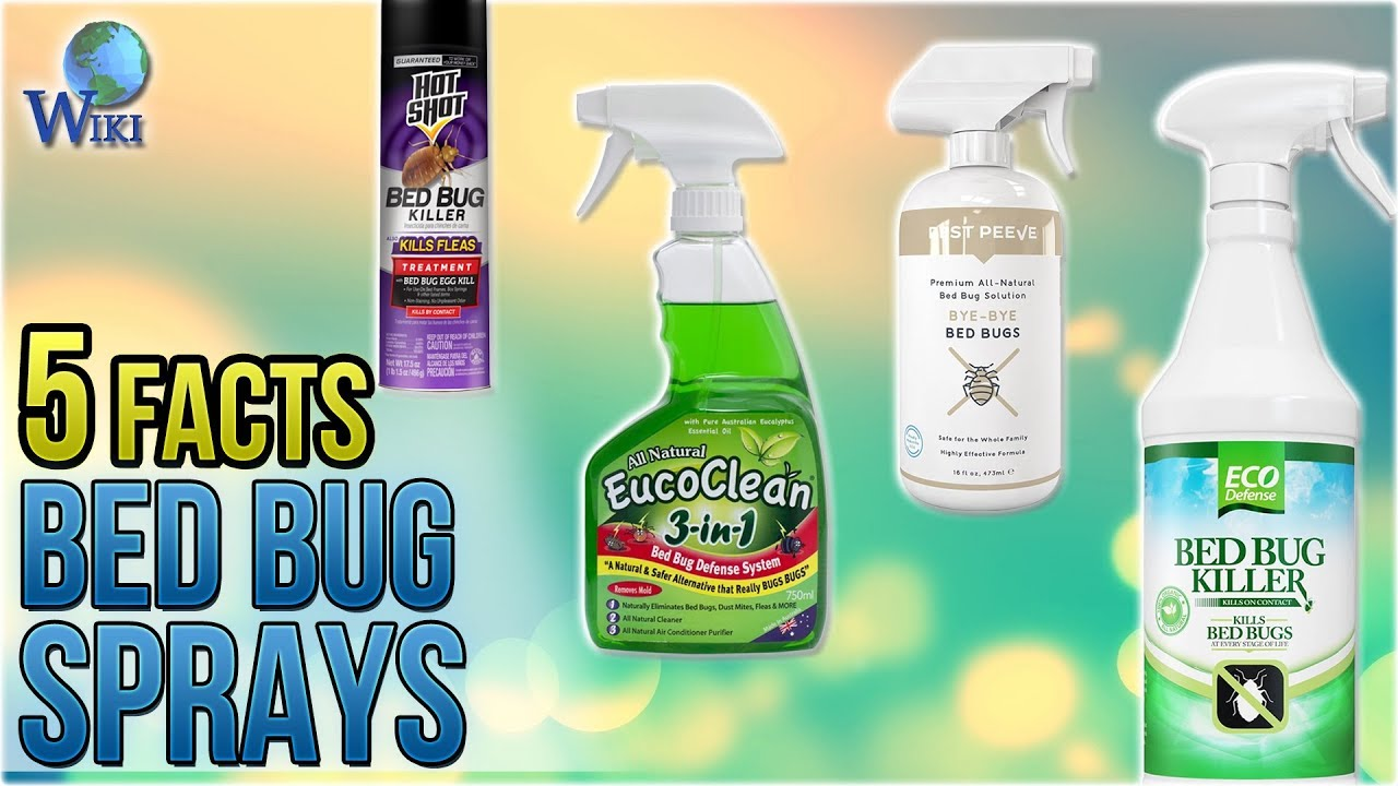 Spray To Kill Bed Bugs Top 10 Bed Bug Sprays Of 2019 Video Review
