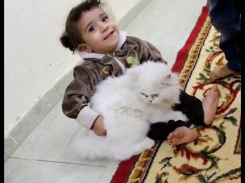 #مريم جننت القطة وعضت ايدها وخافت !!
