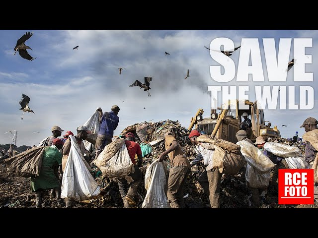 5 Gennaio 2021 - Kiteezi Landfill