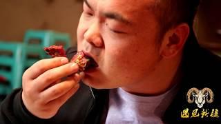 """【原创】新疆胖纸哥在阿克苏""""三号仓库""""吃羊肚 还不忘手拿羊排"""