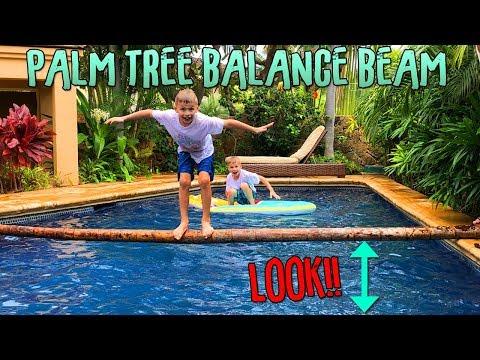 Palm Tree Balance Beam - Who Falls Off First??