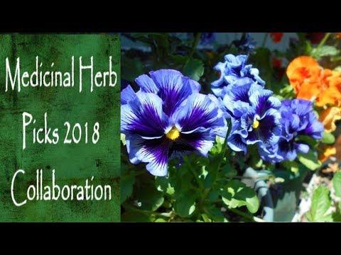 Medicinal Herb Picks for 2018 Collaboration