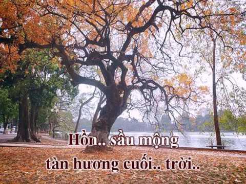 Tình Bỗng Khói Sương (Phạm Anh Dũng, thơ Phạm Ngọc) - Bảo Yến (Voice Guide)