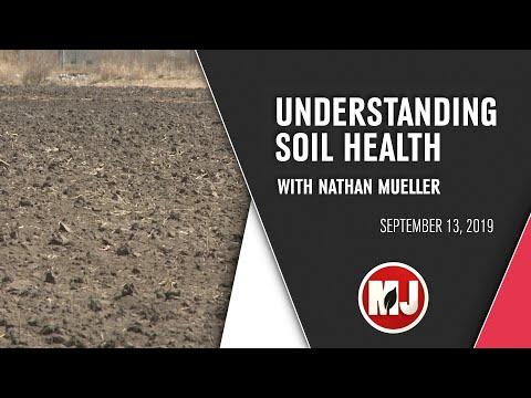Winter Wheat & Soil Reminders | September 13th, 2019