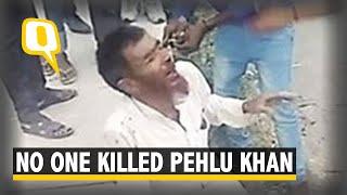 Pehlu Khan Lynching Case Live: No One Killed Pehlu Khan: What We Know So Far