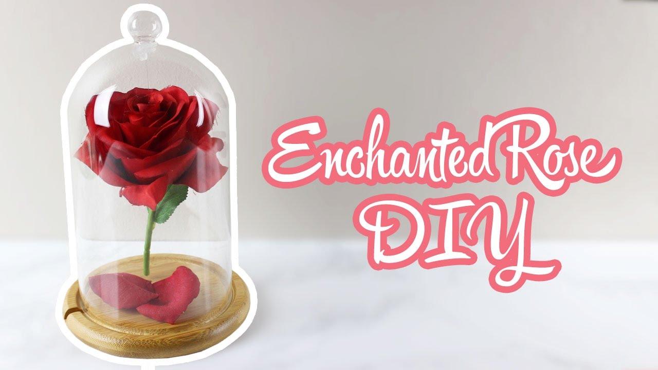 Floating Enchanted Rose Diy Beauty And The Beast Week Parejeda