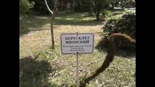 Абхазия   Сухум, Ботанический сад 2