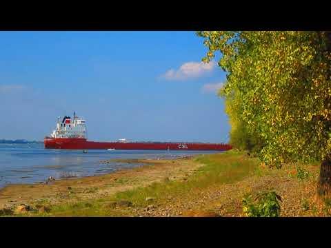 The Pineglen - Canada Steamship Lines - Bulk Carrier - Near Montreal