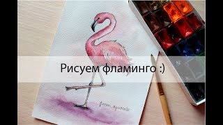 Как нарисовать фламинго. Урок рисования. Скетчинг.