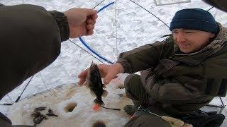 Зимняя Рыбалка На Ротана Ловля Ротана На Косынки Эксперимент