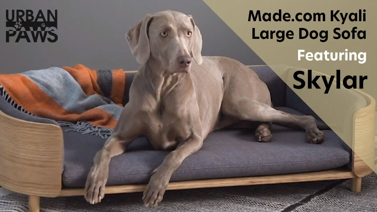 Kyali Large Dog Sofa, Natural Ash and Grey