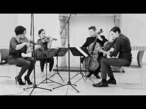 Philip Glass  String Quartet No 3 Mishima , VI