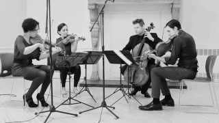 Play String Quartet No.5