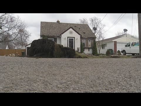 North Tonawanda house badly damaged by fallen tree