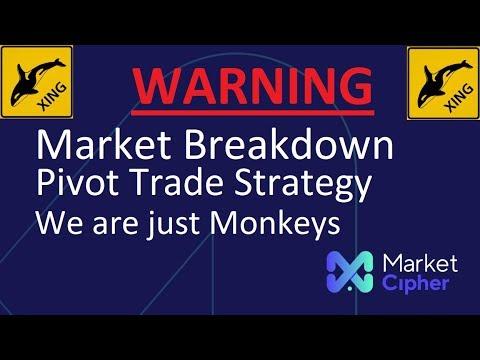 Whales analysis crypto trading