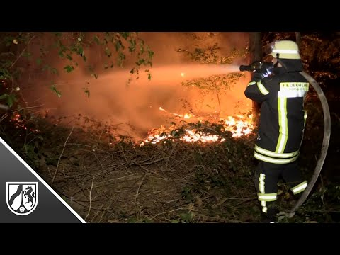 Waldbrand in Dormagen: