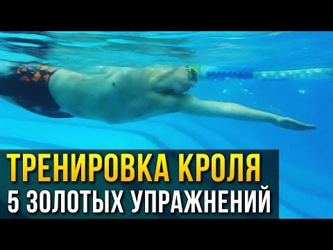 Как быстро научиться плавать кролем. 5 золотых упражнений