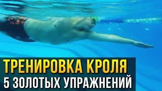 Плавание кролем - 5 базовых упражнений на технику