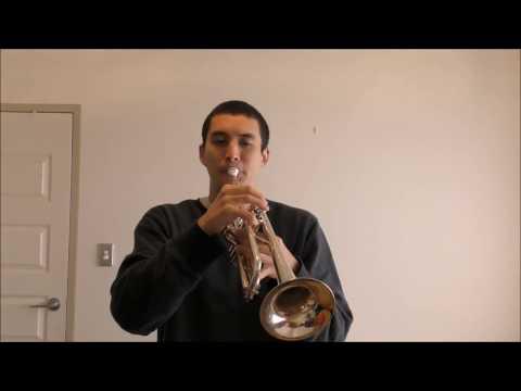 Herb Alpert - The Lonely Bull (Trumpet)