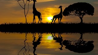 Путешествие в Африку.  Крюгер(