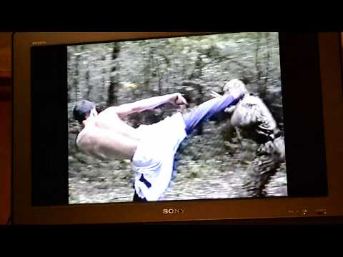 Мой видеосалон - Нинзя в Совином лесу...