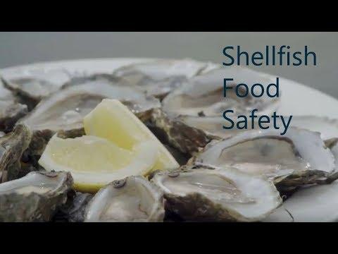 Marine Institute Shellfish Food Safety