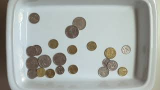 Many Coins Falling Sound Effect